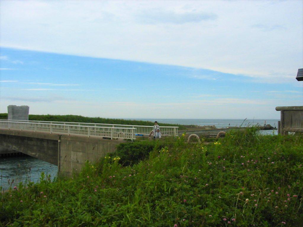 第二糊口の橋2010年