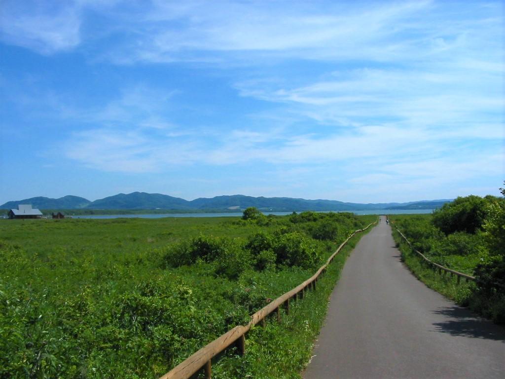 ワッカ原生花園サイクリングロード